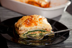 烤宽面条用菠菜和三文鱼 库存图片