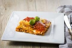 烤宽面条的开胃部分在一块白色板材的用西红柿酱 库存图片