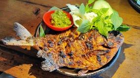 烤巴瓦尔鱼用与绿色辣酱的酱油 免版税库存照片