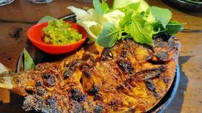 烤巴瓦尔鱼用与绿色辣酱的酱油 库存图片
