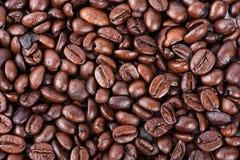 烤棕色咖啡豆 免版税库存照片