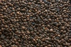 烤棕色咖啡豆 库存图片