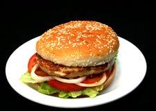 烤汉堡包 库存图片