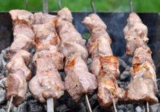 烤烤肉牛肉肉Kebabs用香料 免版税库存图片