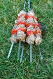 烤烤肉kebab热的格栅,好快餐室外野餐 免版税库存照片