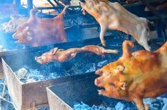 烤猪幼儿 免版税库存图片