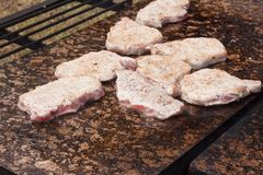 烤猪排和鸡在一个热的花岗岩工作台面 与烤肉的夏天党 烤在一块热的石头 免版税库存图片