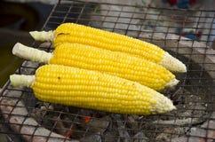 烤玉米菜烤了玉米 库存图片