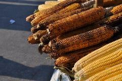 烤玉米 库存照片