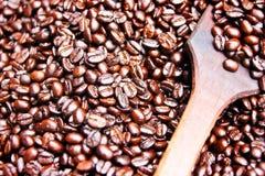 烤的咖啡豆 免版税库存图片