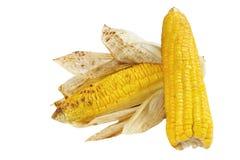 烤的开胃菜玉米 库存照片