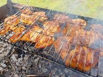 烤的开胃鸡在格栅 免版税库存图片