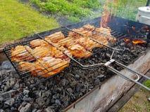 烤的开胃鸡在格栅 免版税图库摄影
