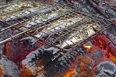 烤的沙丁鱼开火 库存照片