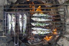 烤的沙丁鱼开火 图库摄影