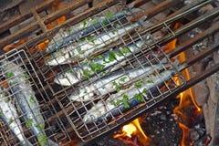 烤的沙丁鱼开火 库存图片