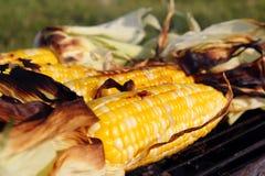 烤的烤肉玉米 免版税库存图片