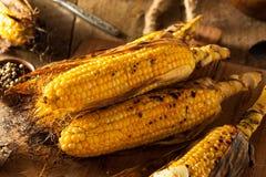 烤的玉米棒玉米 图库摄影