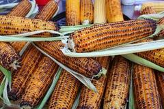 烤的玉米 图库摄影