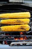 烤的甜玉米玉米棒 免版税库存图片