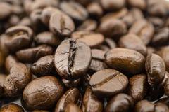 烤的豆咖啡 库存图片