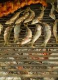 烤的食物 免版税库存照片