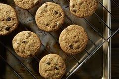 从烤箱的巧克力曲奇饼 图库摄影