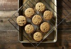 从烤箱的巧克力曲奇饼 免版税库存照片
