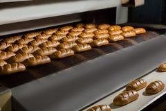 从烤箱的新鲜的小圆面包 库存照片