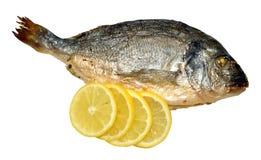 烤箱被烘烤的海鲷用柠檬 免版税库存照片