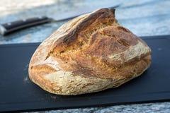 烤箱被烘烤的面包 库存图片