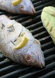 烤红鲷鱼 免版税库存照片