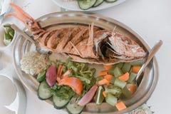 烤红鲷鱼 库存照片
