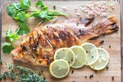 烤罗非鱼用在木板的草本 免版税库存图片