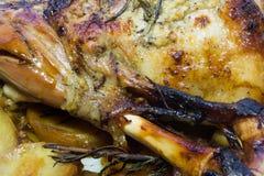 烤羊腿用土豆和迷迭香 库存照片