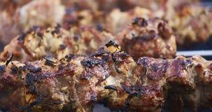 烤肉串俄国人版本 免版税库存照片