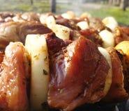 烤肉串在火盆烤肉烤室外开胃野餐香料油煎 免版税库存图片