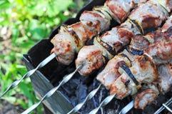 烤肉串, DOF 免版税库存照片