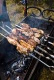 烤肉串 库存照片