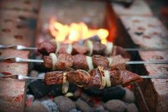 烤肉串 免版税图库摄影