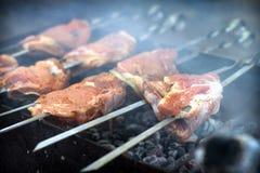 烤肉串 图库摄影