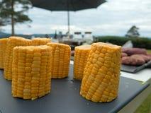 烤肉党的玉米 免版税库存照片