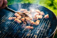 烤肉可口品种在烤肉木炭的烤 免版税库存照片
