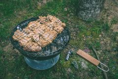 烤肉可口品种在烤肉木炭的烤 g 免版税图库摄影