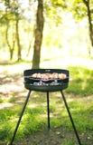 烤肉在庭院里 库存照片