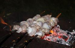 烤肉在开火的晚上油煎 库存照片