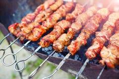 烤肉开胃片断在火的 免版税库存照片