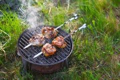 烤肉开胃片断在火的 库存照片