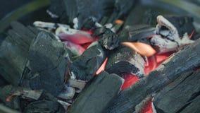 烤肉格栅查出 热的煤炭和灼烧的火焰 免版税库存图片