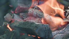 烤肉格栅查出 热的煤炭和灼烧的火焰 图库摄影